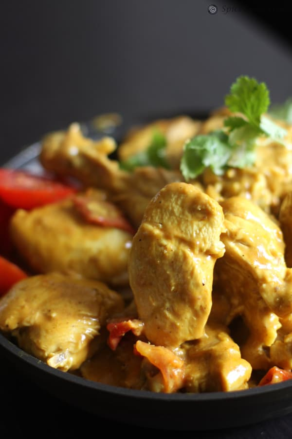 Chicken in Yogurt Sauce – Dahi Murgi